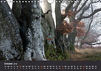 Northumbrian Landscapes (Wall Calendar 2019 DIN A4 Landscape) - Produktdetailbild 10