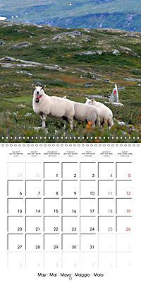 Norway: Crossing the Hardangervidda (Wall Calendar 2019 300 × 300 mm Square) - Produktdetailbild 5