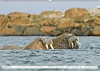 Norwegen: Fjorde, Wald und Mitternachtssonne (Wandkalender 2019 DIN A2 quer) - Produktdetailbild 10