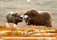 Norwegen: Fjorde, Wald und Mitternachtssonne (Wandkalender 2019 DIN A4 quer) - Produktdetailbild 2
