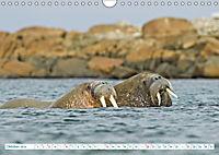 Norwegen: Fjorde, Wald und Mitternachtssonne (Wandkalender 2019 DIN A4 quer) - Produktdetailbild 10