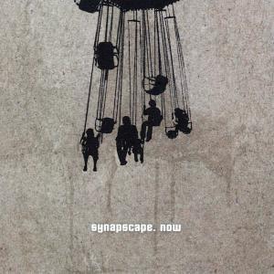 Now, Synapscape
