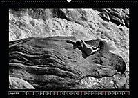 nude on the rocks (Wandkalender 2019 DIN A2 quer) - Produktdetailbild 8