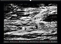 nude on the rocks (Wandkalender 2019 DIN A2 quer) - Produktdetailbild 10