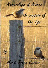 Numerology of Names: the Purpose of the Ego, Mark James Carter