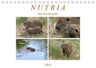 NUTRIA mit Nachwuchs (Tischkalender 2019 DIN A5 quer), SchnelleWelten