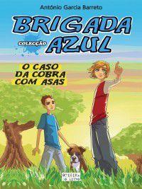 O Caso da Cobra com Asas, António Rodrigo Garcia Barreto