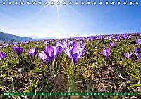 Oberösterreich Urlaubsregion Pyhrn-Eisenwurzen (Tischkalender 2019 DIN A5 quer) - Produktdetailbild 3