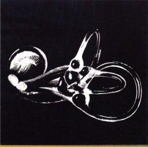 Obtainium, Skeleton Key