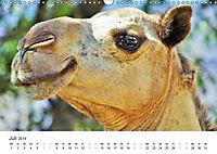 Oman - Arabiens Zauberwelt (Wandkalender 2019 DIN A3 quer) - Produktdetailbild 7