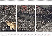 ON THE R(O)AD (Wandkalender 2019 DIN A3 quer) - Produktdetailbild 9