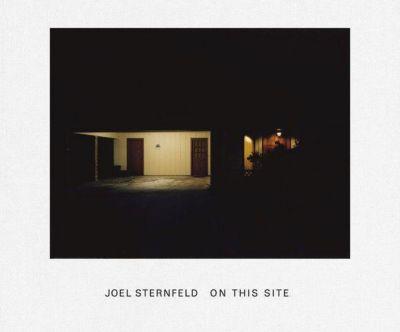 On This Site, Joel Sternfeld