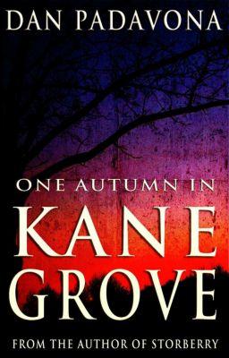 One Autumn in Kane Grove, Dan Padavona