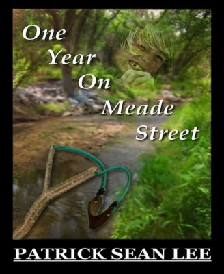 One Year On Meade Street, Patrick Sean Lee