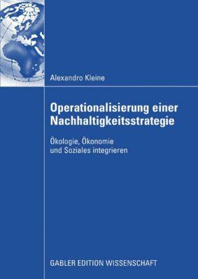 Operationalisierung einer Nachhaltigkeitsstrategie, Alexandro Kleine