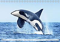 Orcas: Schwarz-weiße Giganten (Tischkalender 2019 DIN A5 quer) - Produktdetailbild 3