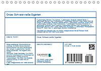 Orcas: Schwarz-weiße Giganten (Tischkalender 2019 DIN A5 quer) - Produktdetailbild 13