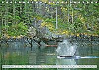 Orcas: Schwarz-weisse Giganten (Tischkalender 2019 DIN A5 quer) - Produktdetailbild 11