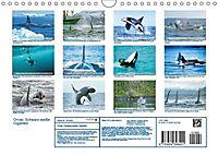 Orcas: Schwarz-weiße Giganten (Wandkalender 2019 DIN A4 quer) - Produktdetailbild 13