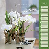 Orchideen 2018 - Produktdetailbild 5
