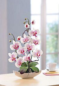 Teelicht tablett mit deko jetzt bei bestellen - Orchideen arrangement ...