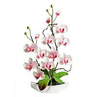 Orchideen-Arrangement - Produktdetailbild 2