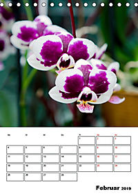 Orchideen - Tropische Schönheiten (Tischkalender 2019 DIN A5 hoch) - Produktdetailbild 2