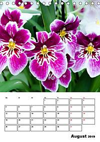 Orchideen - Tropische Schönheiten (Tischkalender 2019 DIN A5 hoch) - Produktdetailbild 8