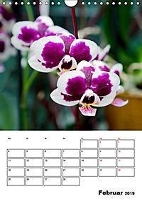 Orchideen - Tropische Schönheiten (Wandkalender 2019 DIN A4 hoch) - Produktdetailbild 2