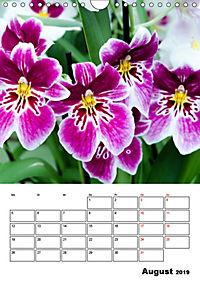 Orchideen - Tropische Schönheiten (Wandkalender 2019 DIN A4 hoch) - Produktdetailbild 8