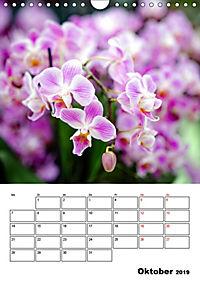 Orchideen - Tropische Schönheiten (Wandkalender 2019 DIN A4 hoch) - Produktdetailbild 10