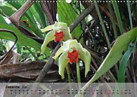 Orchideenland Ecuador (Wandkalender 2019 DIN A3 quer) - Produktdetailbild 12