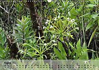 Orchideenland Ecuador (Wandkalender 2019 DIN A3 quer) - Produktdetailbild 8