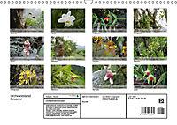 Orchideenland Ecuador (Wandkalender 2019 DIN A3 quer) - Produktdetailbild 13