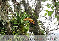 Orchideenland Ecuador (Wandkalender 2019 DIN A4 quer) - Produktdetailbild 4