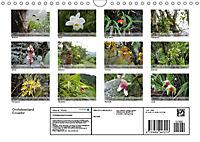 Orchideenland Ecuador (Wandkalender 2019 DIN A4 quer) - Produktdetailbild 13