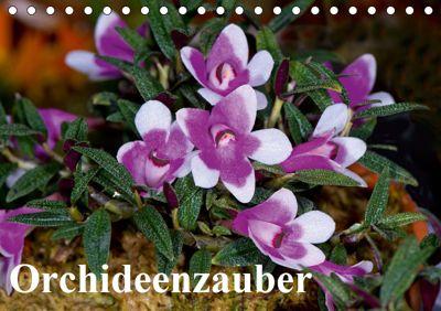 Orchideenzauber (Tischkalender 2019 DIN A5 quer), Eerika Schulz