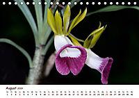 Orchideenzauber (Tischkalender 2019 DIN A5 quer) - Produktdetailbild 8
