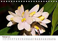 Orchideenzauber (Tischkalender 2019 DIN A5 quer) - Produktdetailbild 2