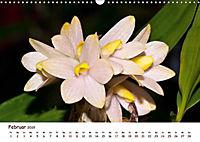 Orchideenzauber (Wandkalender 2019 DIN A3 quer) - Produktdetailbild 2