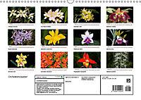 Orchideenzauber (Wandkalender 2019 DIN A3 quer) - Produktdetailbild 13