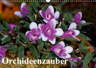 Orchideenzauber (Wandkalender 2019 DIN A3 quer), Eerika Schulz