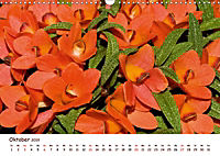Orchideenzauber (Wandkalender 2019 DIN A3 quer) - Produktdetailbild 10