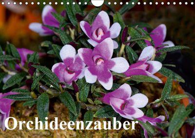 Orchideenzauber (Wandkalender 2019 DIN A4 quer), Eerika Schulz