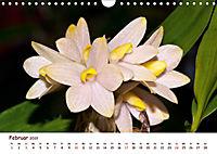 Orchideenzauber (Wandkalender 2019 DIN A4 quer) - Produktdetailbild 2