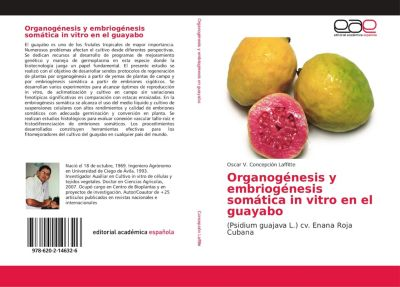 Organogénesis y embriogénesis somática in vitro en el guayabo, Oscar V. Concepción Laffitte