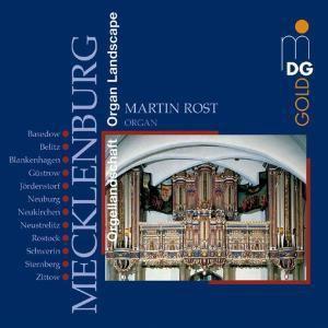 Orgellandschaft Mecklenburg, Martin Rost