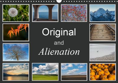 Original and Alienation (Wall Calendar 2019 DIN A3 Landscape), Hans Seidl
