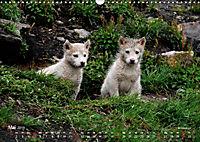 Ost-Grönland (Wandkalender 2019 DIN A3 quer) - Produktdetailbild 5