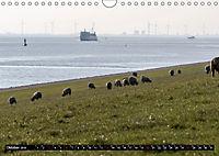 Ostfriesland - Der Dollart (Wandkalender 2019 DIN A4 quer) - Produktdetailbild 10